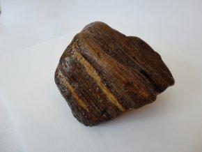 Fosilní ( zkamenělé ) dřevo - ARAUKARIT 02