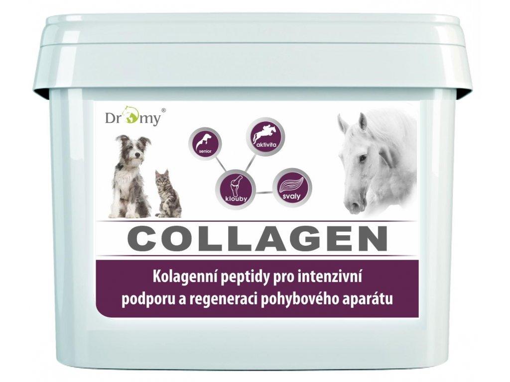 collagen 2500g