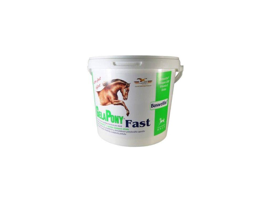 Gelapony Fast