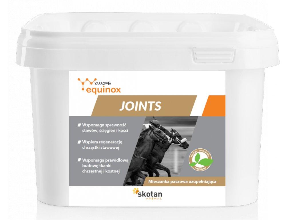 Equinox Joints 15 kg