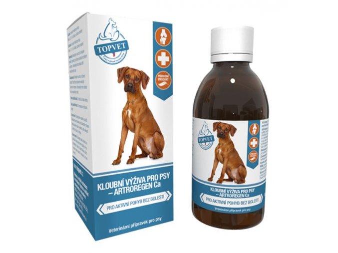 Kloubní výživa sirup pro psy 200ml