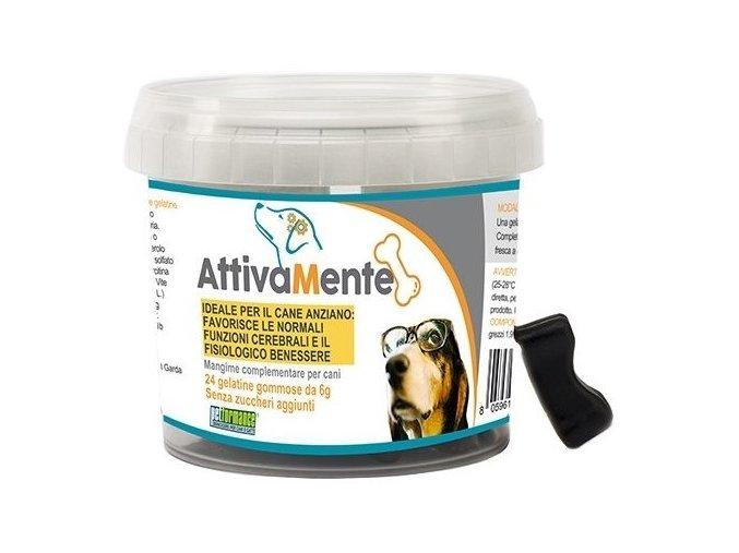 3387 attivamente gelatine per cani anziani1