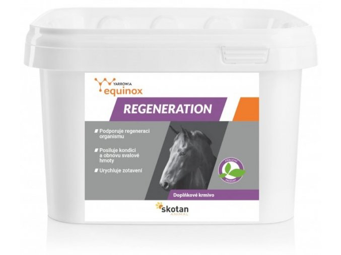 4622 equinox regeneration 1 5kg cz