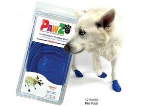 medium paws