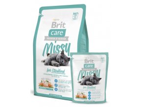 Brit missy