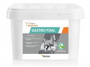 4625 equinox gastro foal 1kg cz