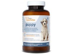 canifelox puppy 240g