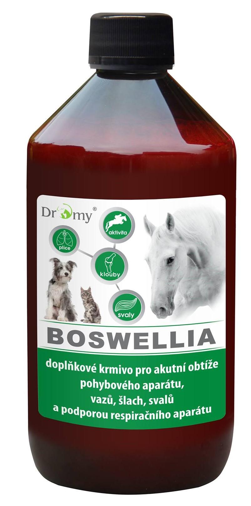 Dromy BOSWELLIA Serrata liquid 1l