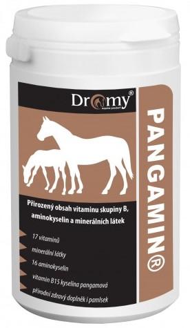 Dromy PANGAMIN® 2000 tbl.