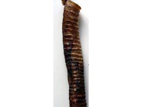 Hrtan 30 cm