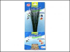 Rostlina TETRA Hairgrass M