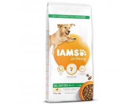 IAMS Dog Adult Large Chicken 12kg  + IAMS Naturally CAT mrazem sušené 100% kuřecí kostky 25g