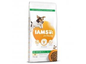 IAMS Dog Adult Small & Medium Chicken 12kg  + IAMS Naturally CAT mrazem sušené 100% kuřecí kostky 25g