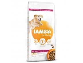 IAMS Dog Senior Large Chicken 12kg  + IAMS Naturally CAT mrazem sušené 100% kuřecí kostky 25g