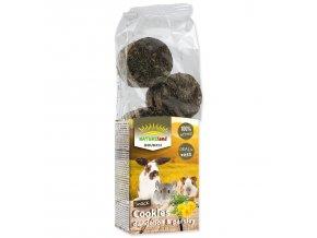 Pochoutka NATURE LAND Brunch sušenky s pampeliškou a petrželí 120g