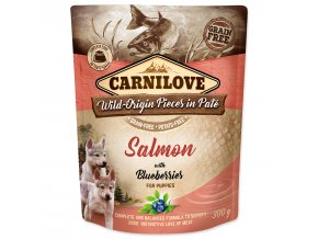 CARNILOVE Puppy Paté Salmon with Blueberries 300g