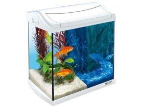 akvarium tetra goldfish 30l