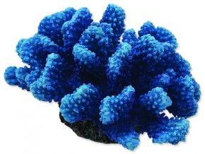 Dekorace AQUA EXCELLENT mořský korál modrý