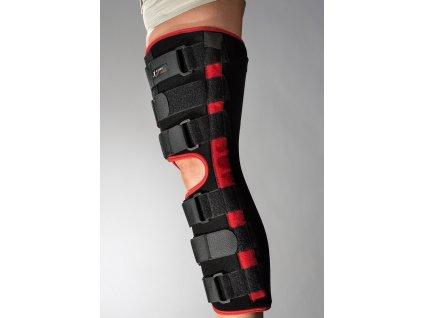 koleno pevne