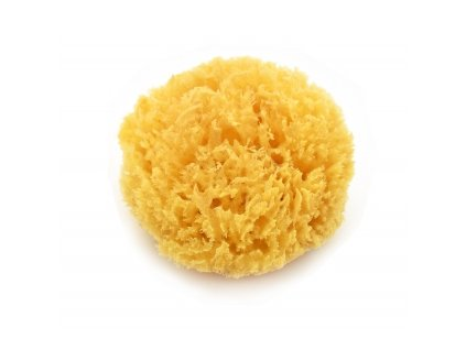 MAGNUM/164-mycí houba koral 10-12cm