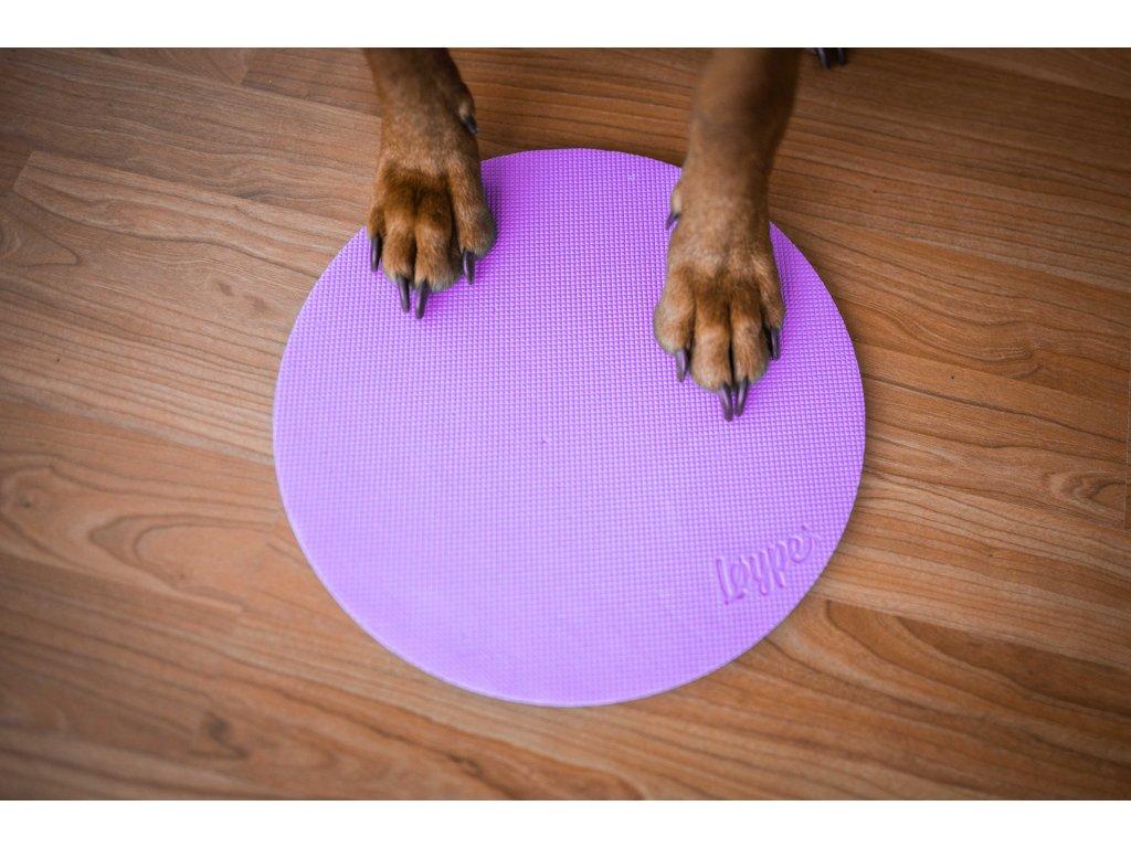 2958 target oranzova web 1 jpg 1