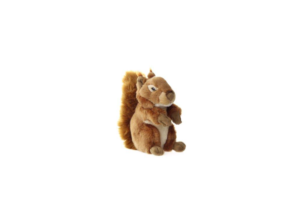 plyšová hračka - veverka