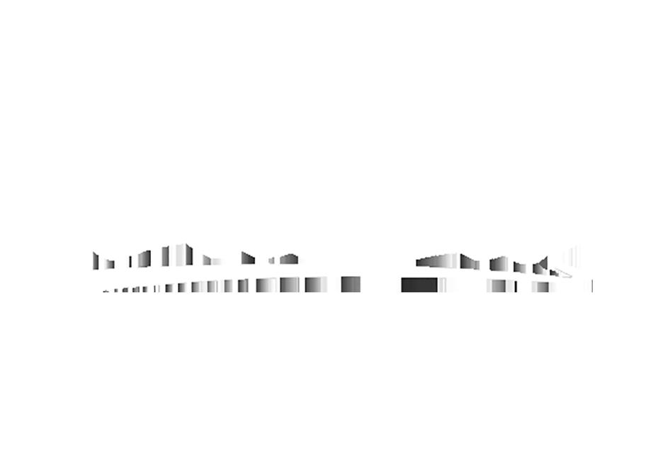 Zuliza