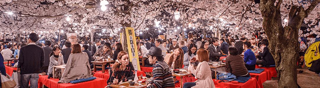 svátek třešňových květů