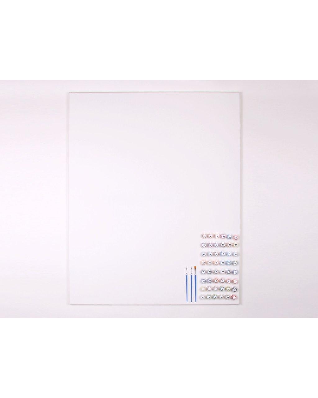 Malování podle čísel - ČISTÉ NEPOTIŠTĚNÉ PLÁTNO + SADA BAREV