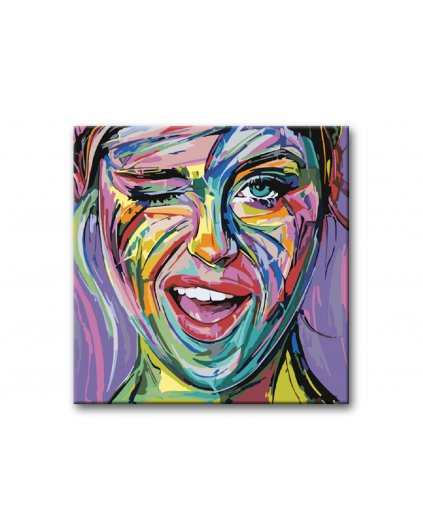 Malování podle čísel - MRKAJÍCÍ POMALOVANÁ TVÁŘ