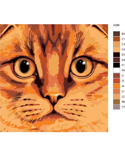 Malování podle čísel - ZRZAVÝ KOCOUREK