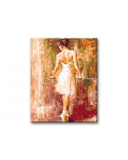 Malování podle čísel - ZASNĚNÁ BALETKA
