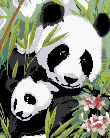 Malování podle čísel - PANDA S MLÁDĚTEM
