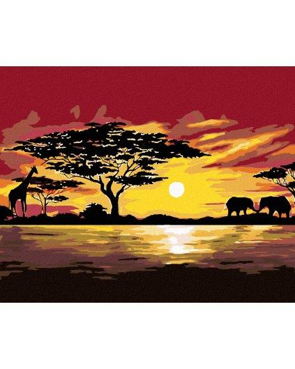 Malování podle čísel - AFRIKA ŽIRAFA A SLONI