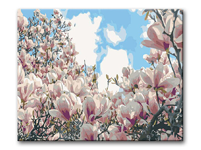 12659_malovani-podle-cisel-kvetouci-magnolie
