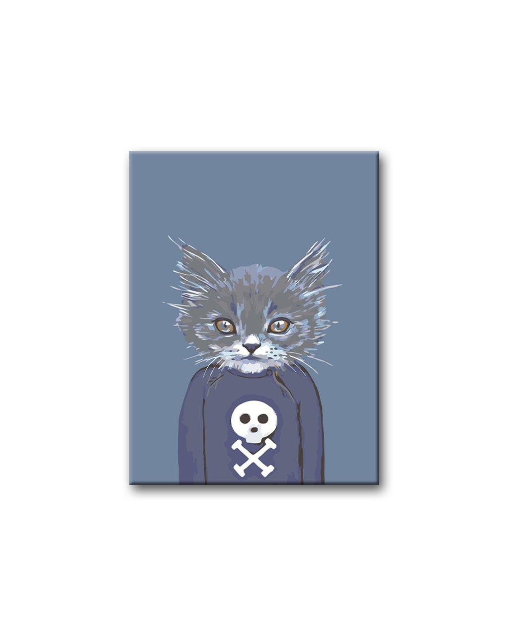 Malowanie po numerach - Szary kotek w swetrze z czaszką