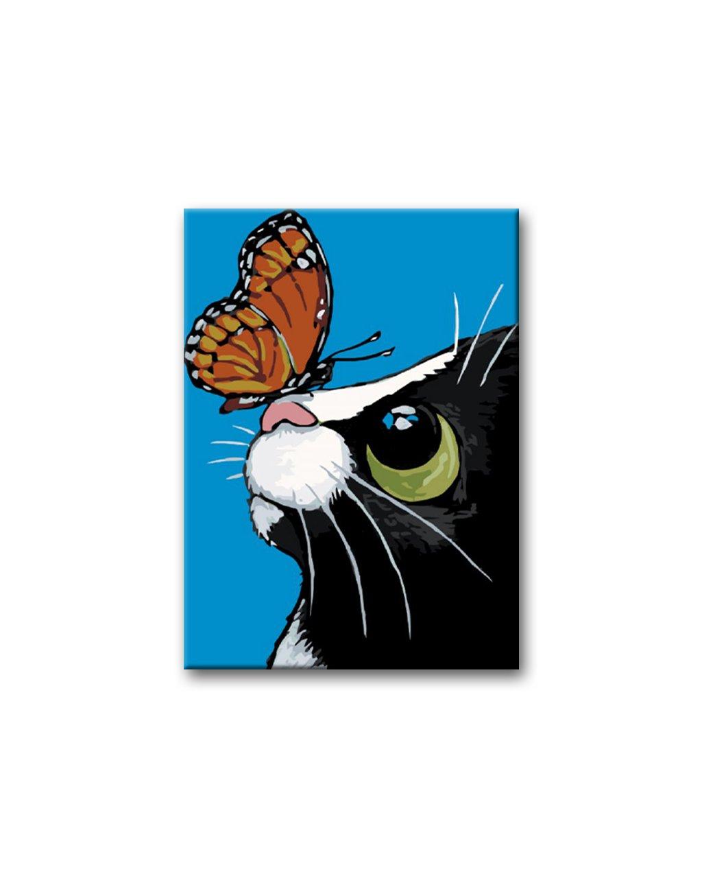 Malowanie po numerach – Kotek z motylkiem na nosie na niebieskim tle