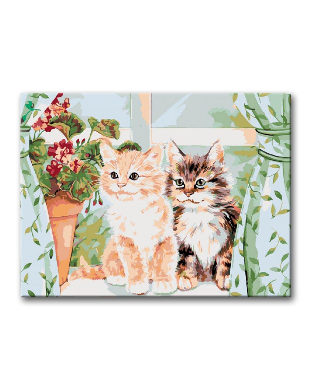 Malowanie po numerach - Dwa kociaki na oknie