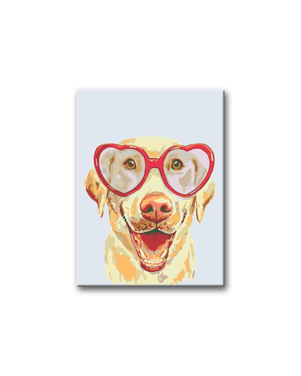 Malowanie po numerach - Labrador w okularach