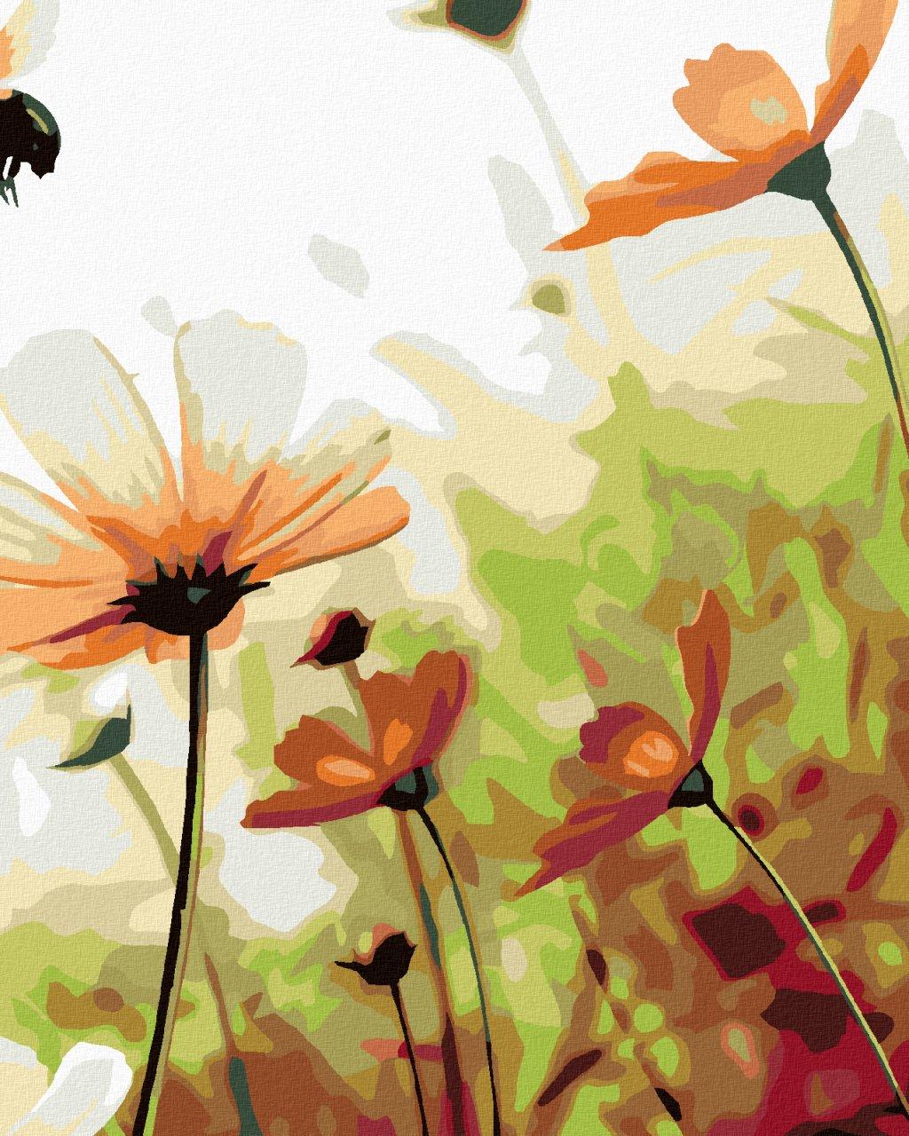 Malowanie po numerach – Kwiatowa łąką
