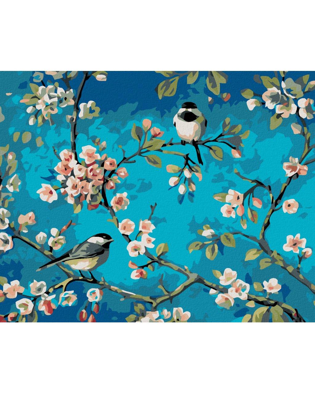 Malowanie po numerach - Dwa ptaki na kwitnącej jabłoni