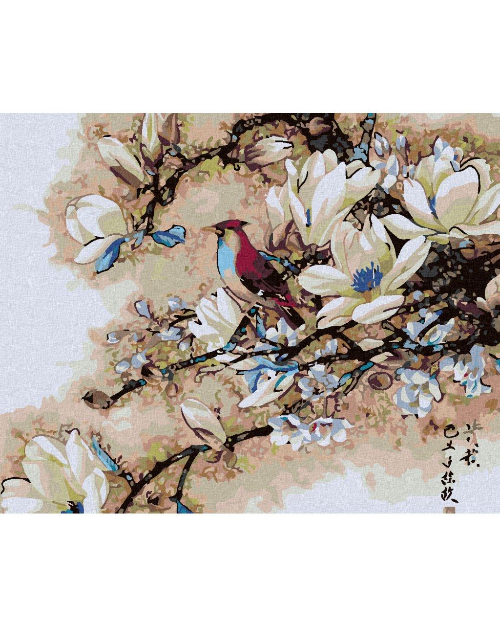 Malowanie po numerach – Ptak na magnolii