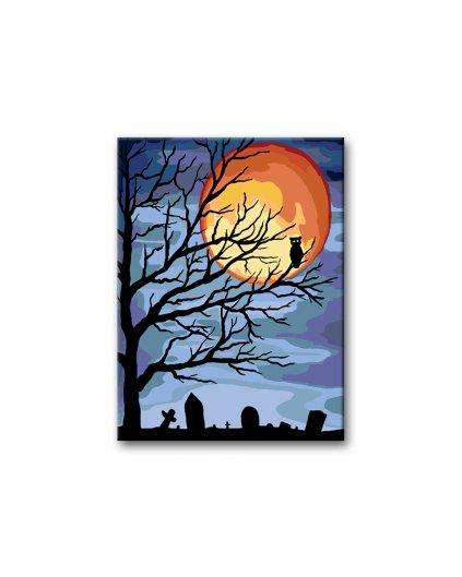 Malowanie po numerach – Sowa na drzewie w pełni księżyca