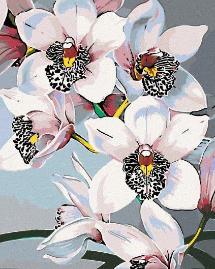 Malowanie po numerach – Świeże orchidee