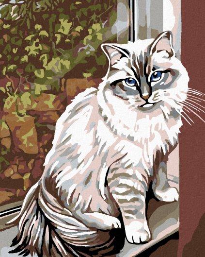 Malowanie po numerach – Biały kot w oknie