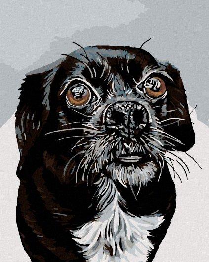 Malowanie po numerach - Czarną pies
