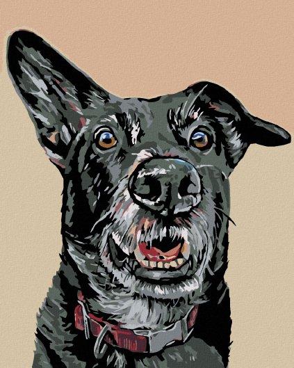 Malowanie po numerach – Nasłuchujący czarny pies