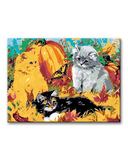 Malowanie po numerach – Kocięta i dynie