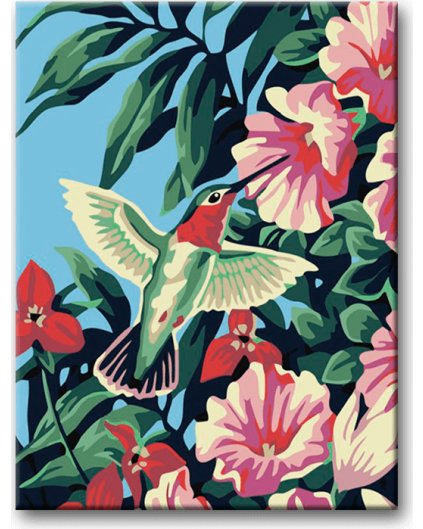 Malowanie po numerach – Koliber na kwiatach hibiskusa