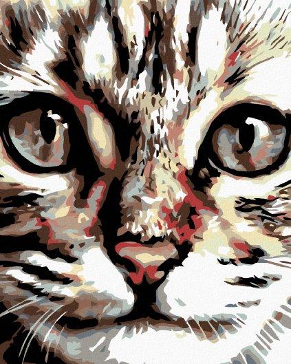 Malowanie po numerach - Pręgowany kotek